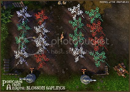 PostcardsFromAzeroth.com: Blossom Saplings